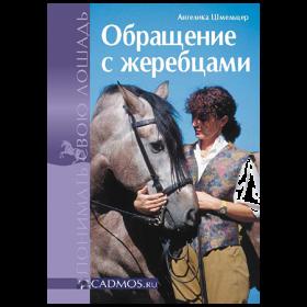 Обращение с жеребцами (Ангелика Шмельцер)