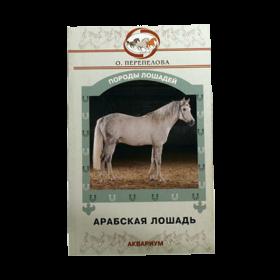 Арабская лошадь (О.В.Перепелова)